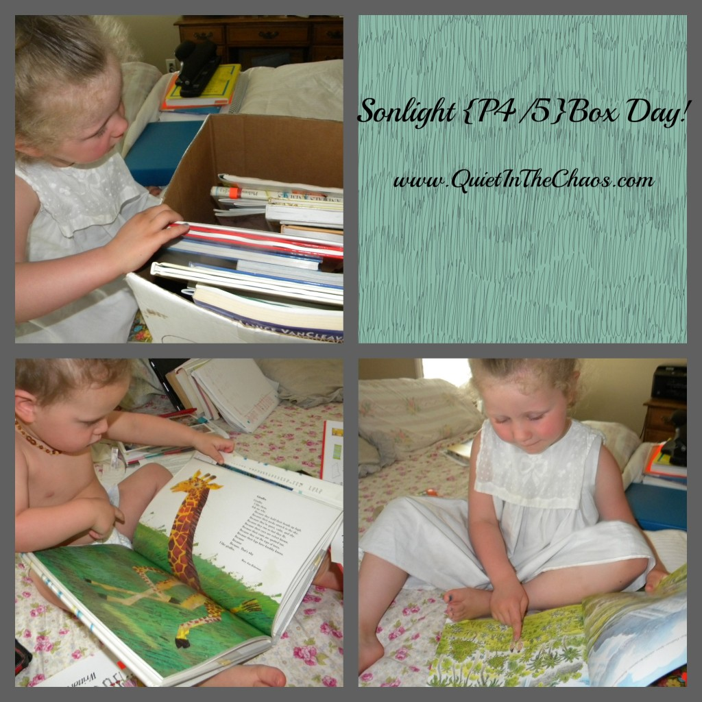 Our first Sonlight Box Day P4/5