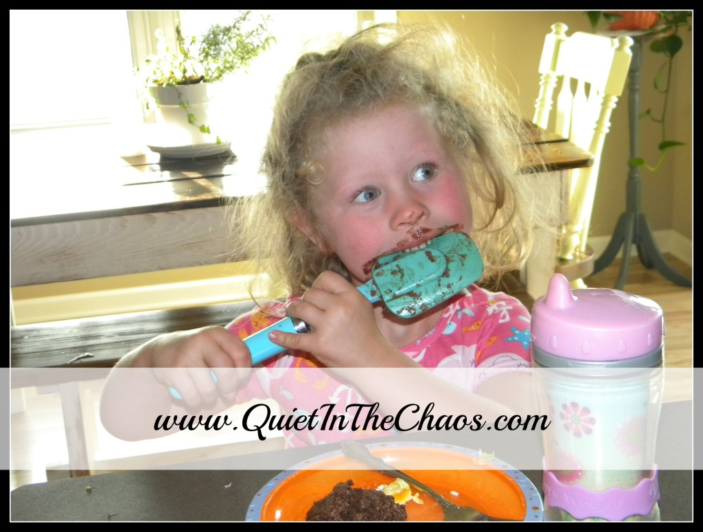 chocolate muffins {Quiet In The Chaos}