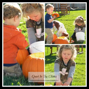 Pumpkin Sensory Play {Quiet in the Chaos}