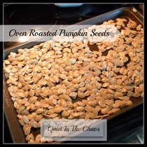 oven roasted pumpkin seeds (so easy!) {Quiet In The Chaos}