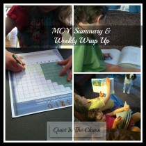 MOY Summary and Weekly Wrap Up {2014/2015} Quietinthechaos.com