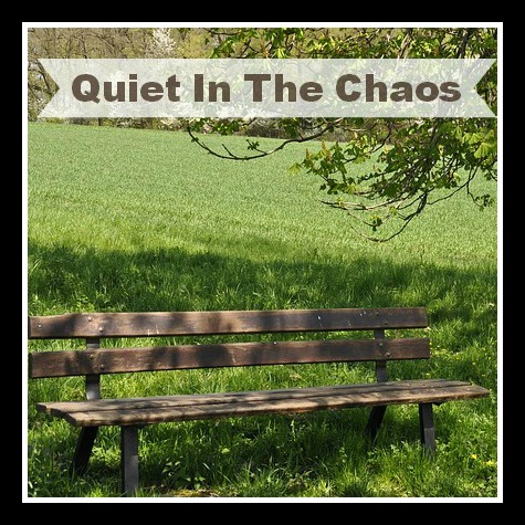 Q is for Finding the Quiet