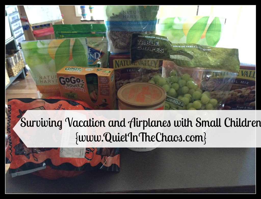 Surviving Vacation & Airplanes with Small Children