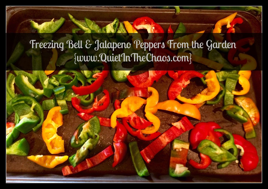 Freezing Bell & Jalapeno Peppers from the Garden