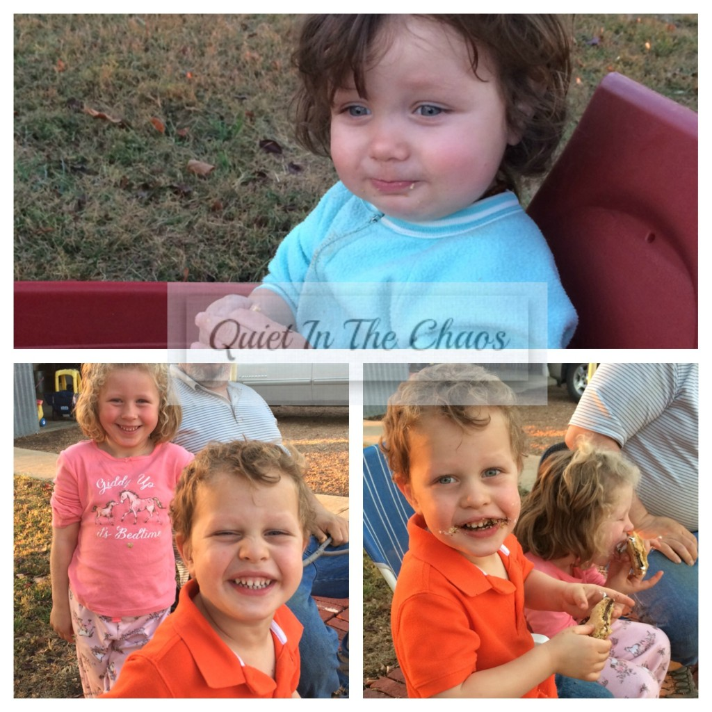 Closing October 2015 on the Farm {smores}