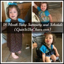 18 Mo Baby Summary and Schedule
