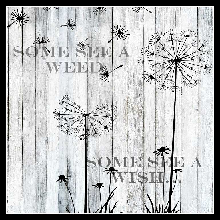 Spring Quote Some Seed a Weed ...