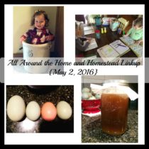 All Around the Home and Homestead Linkup
