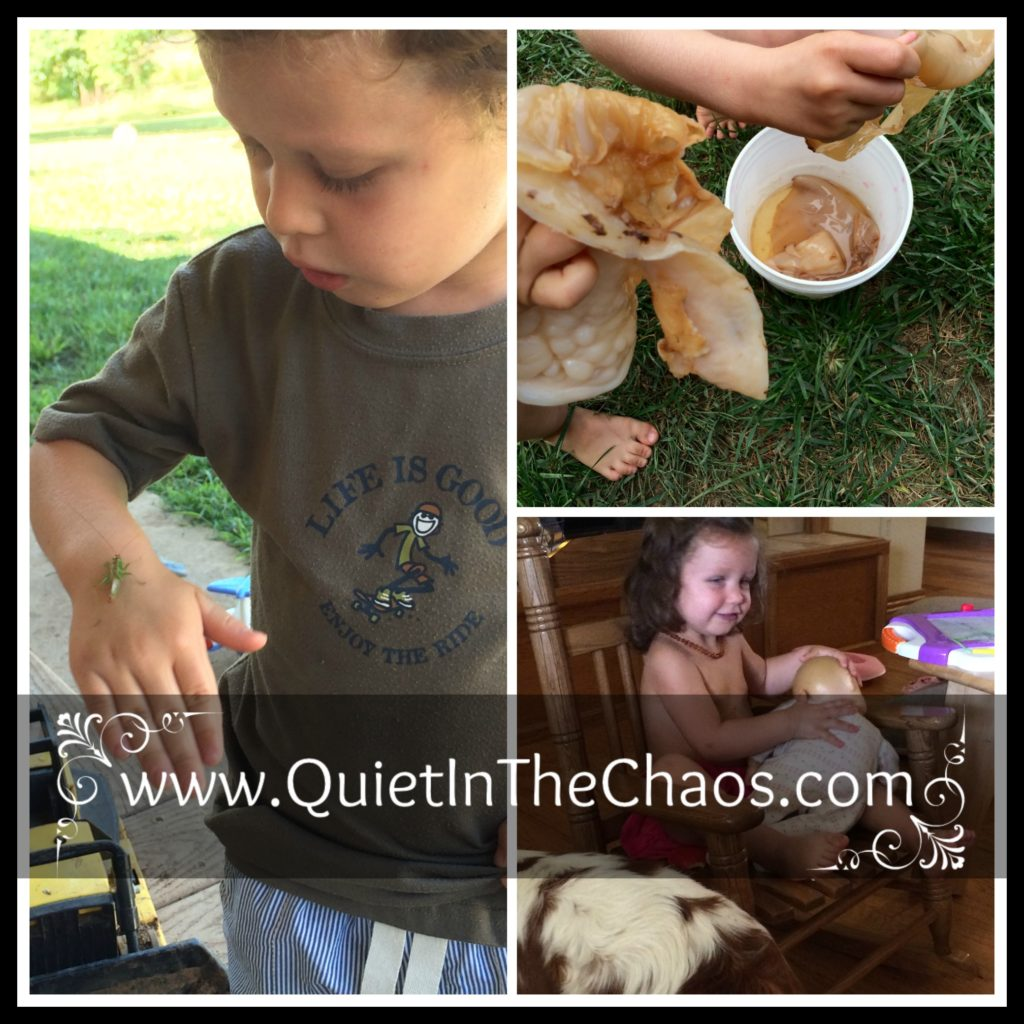 Lots of Play {homeschool}