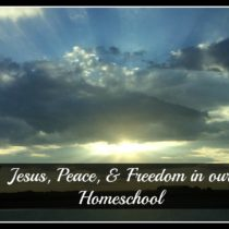 Jesus Peace & Freedom