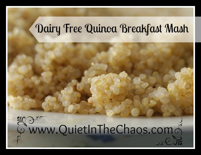 Quinoa Breakfast Mash