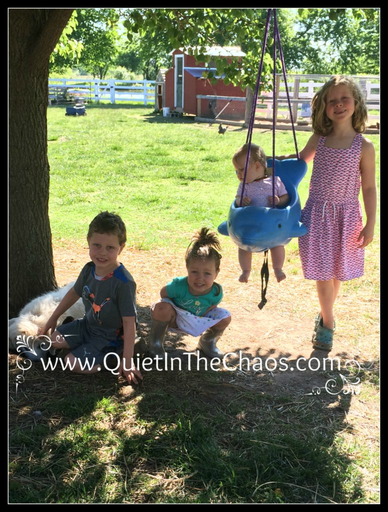 Wordless Wednesday 5-17-17