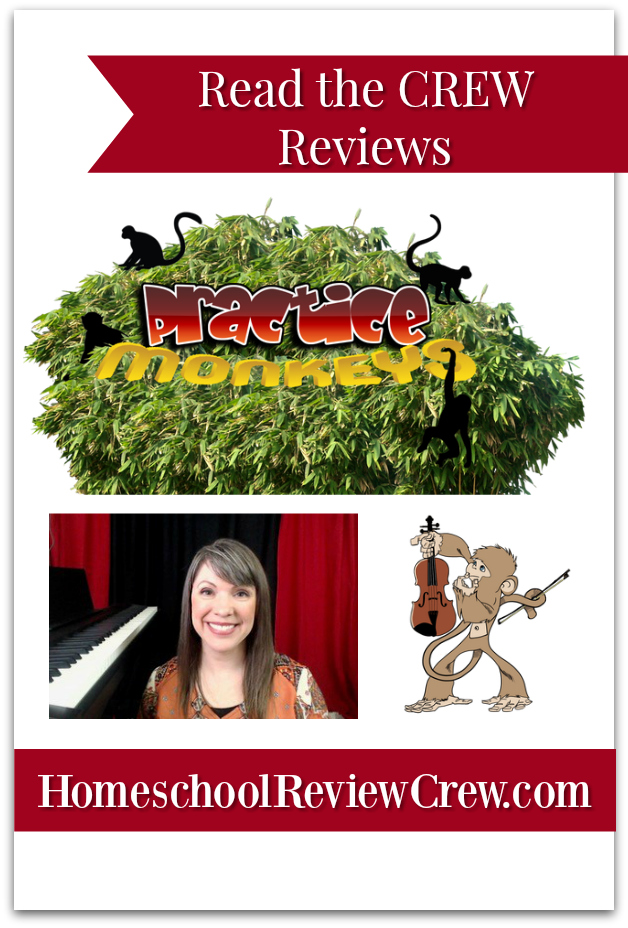Practice monkeys Violin lessons Online