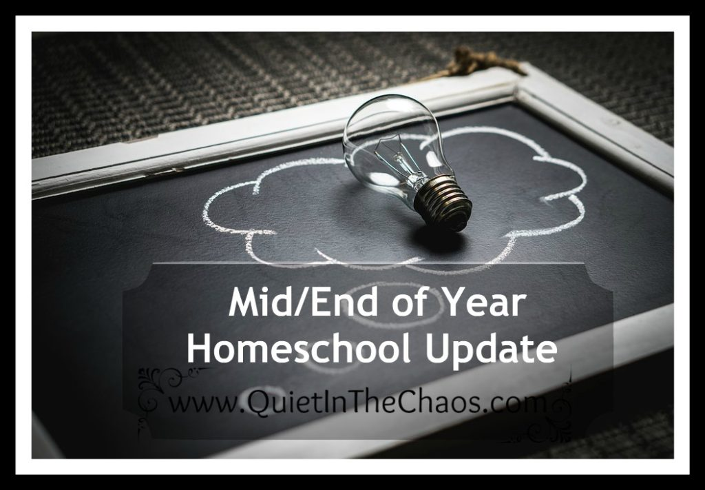 Mid/End of Year Homeschool Learning Update