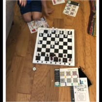 fun family chess, game set up